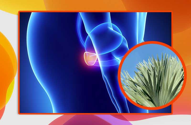 nessun+problema+il+medico+controlla+la+prostata
